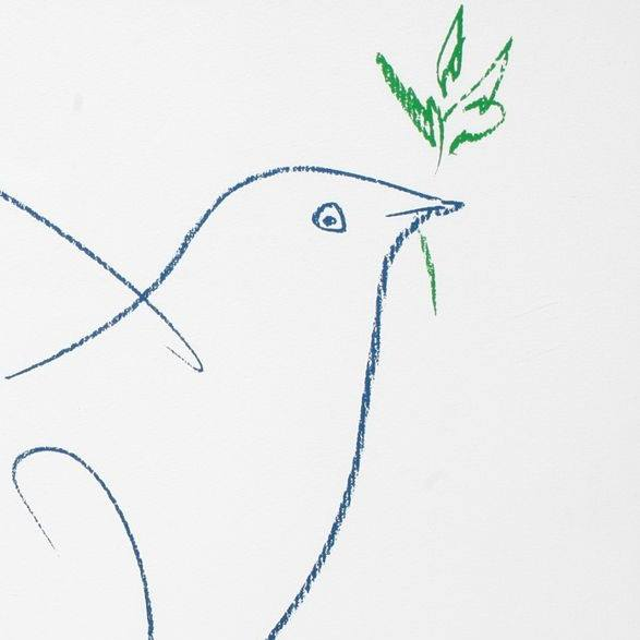 picasso pigeon drawing